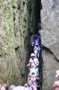 Wycieczka do Kotliny Kłodzkiej-28